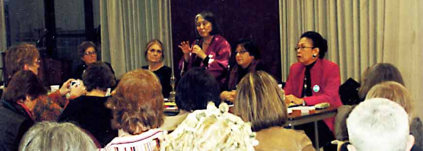 CSW-5WWC Panel